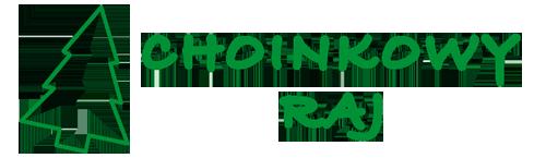 Sklep Choinkowy Raj-choinka kupiona on-line, bez wychodzenia z domu!